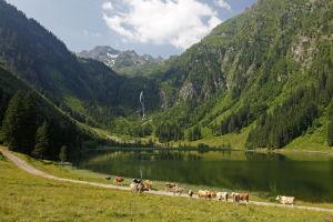 Bodensee © Raffalt